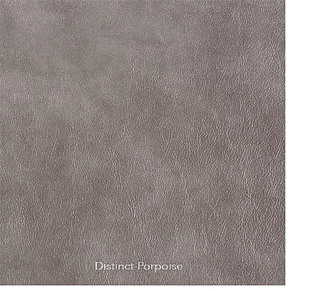 v-distinct-porpoise-5.jpg