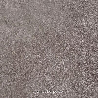 v-distinct-porpoise.jpg