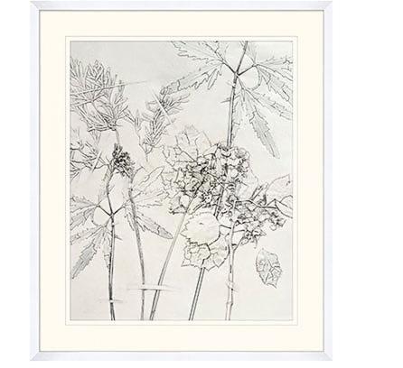 wend-press-floral-4.jpg